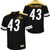 Pittsburgh Steelers - Polamalu #43 Hashmark Jersey